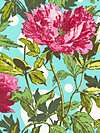 Soul Blossoms AB59-Amaranth Fabric by Amy Butler