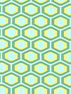 Midwest Modern AB25-Green Fabric by Amy Butler