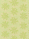 Nest Voile VVW01-Lime Voile Fabric by Valori Wells