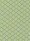 Bekko WS5722-GRAS Home Dec Fabric by Trenna Travis