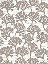 By the Sea DC5984-CLAY Fabric by London Portfolio