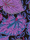 Philip Jacobs PWPJ070-Purple Fabric
