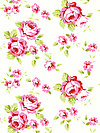 Rambling Rose PWTW133-WHITE Fabric by Tanya Whelan