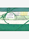 Friedlander FERN Half Yard Gift Pack by Carolyn Friedlander