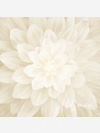 Dream Big P4389-22-Ivory Fabric Panel by Hoffman Fabrics