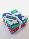 Michael Miller Color Stories Prepsters Fat Quarter Bundle